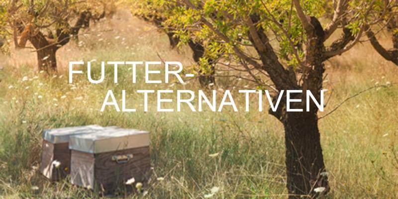 Bienenfutteralternativen Bienenfutter, Bienenfutterteig & Bienenfuttersirup ambrosia® Header rechts