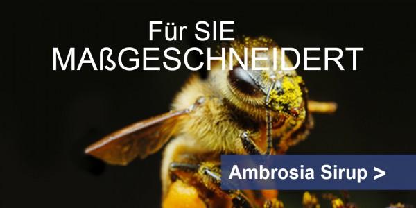 Bienenfutter Sirup ambrosia® Teaser