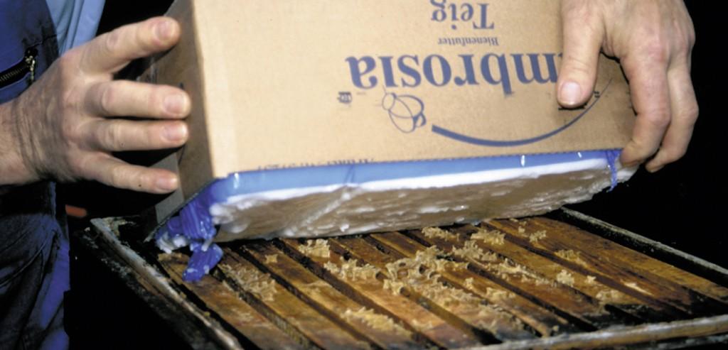 Bienenfutter Teig ambrosia® Anwendung