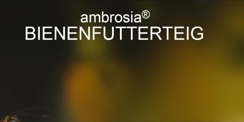 Bienenfutter Teig ambrosia® Header rechts