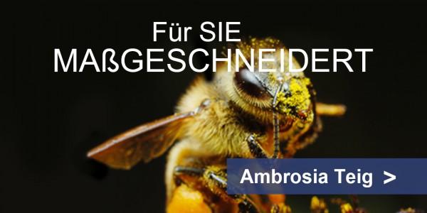 Bienenfutter Teig ambrosia® Teaser